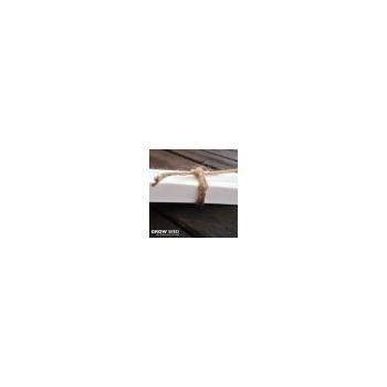 Cucamelon Seeds