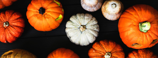 What to do with leftover pumpkins