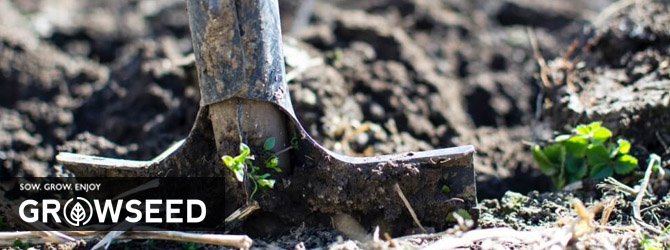 How you can prepare your soil for Spring