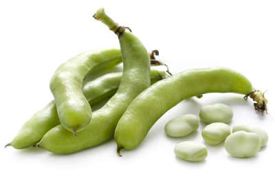 Cheap Broad Bean Seeds