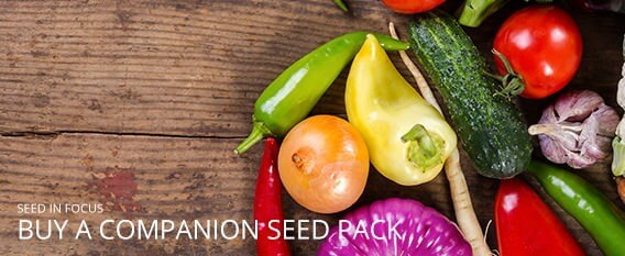 Buy Seed Packs